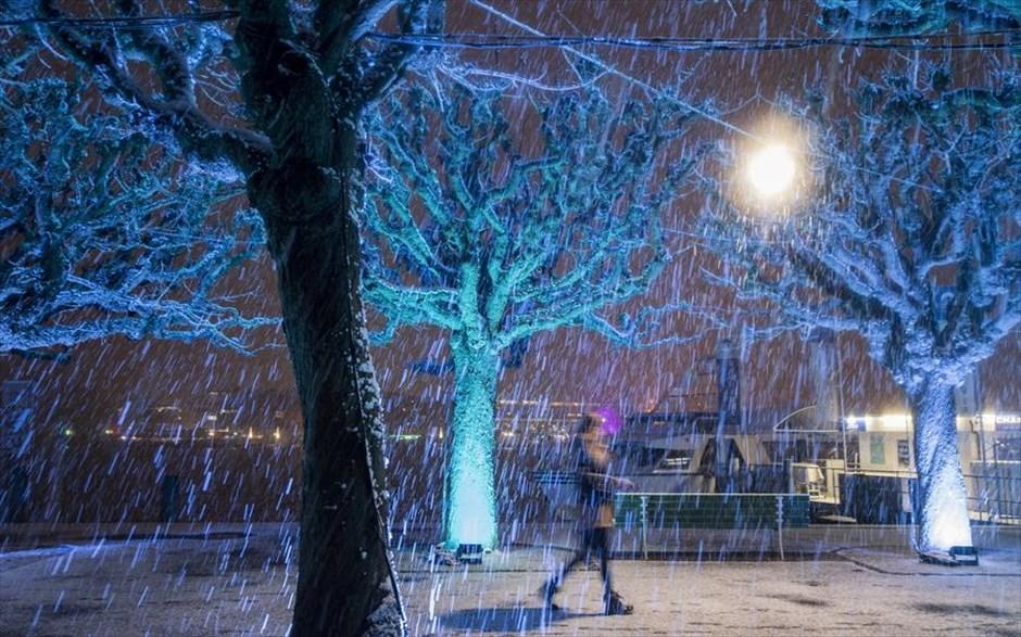 11.01.2019 | Bild des Tages | Schnee und Lichter in Luzern | Dream ...