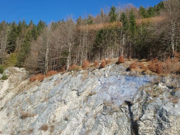 12.11.2018 | Bild des Tages | Herbst in Tirol - von DreamBoy auf Dream Boy