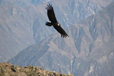 Perú: Andes, lago Titicaca a La Paz, Bolivia